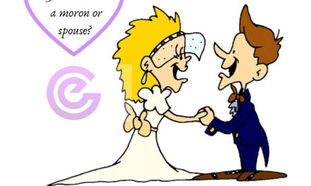 Marketing Insights 102: Is Your Customer A Moron Or Spouse?