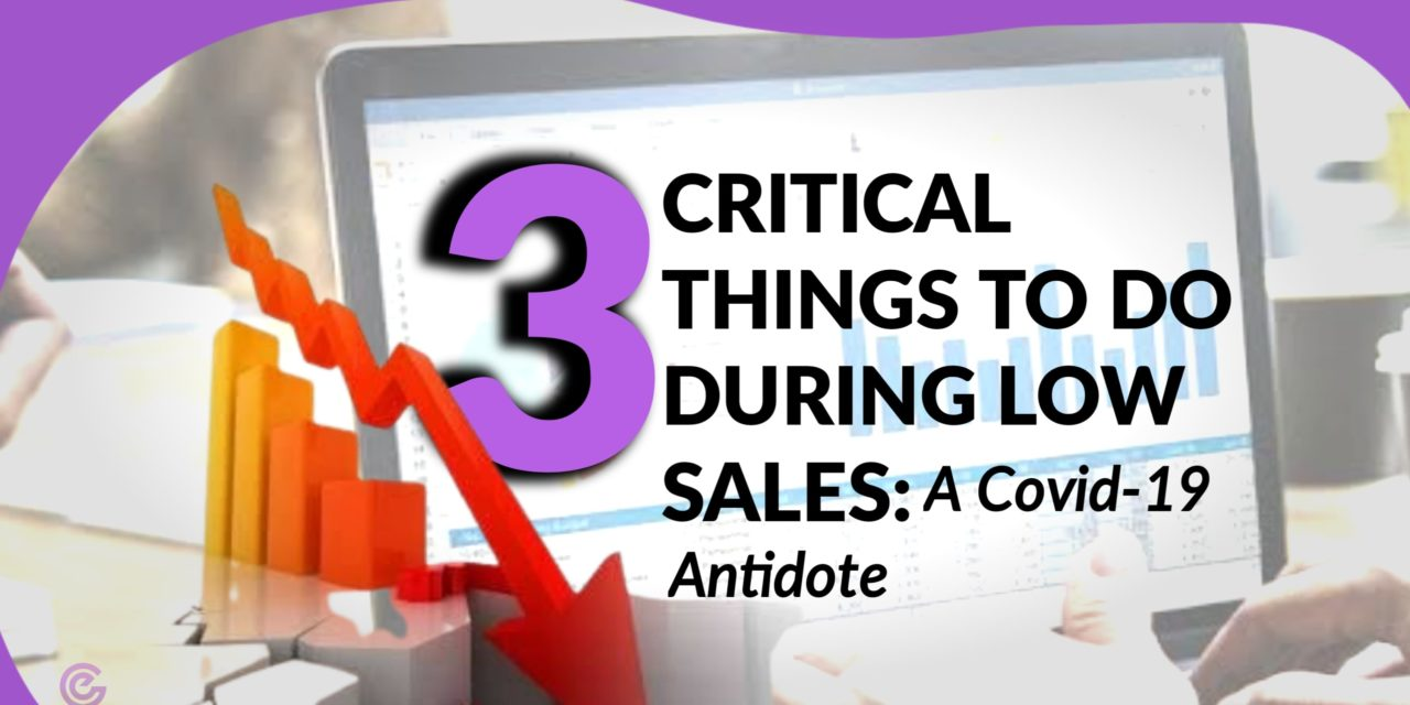 COVID-19 ANTIDOTE: 3 Critical Things to do At low sales